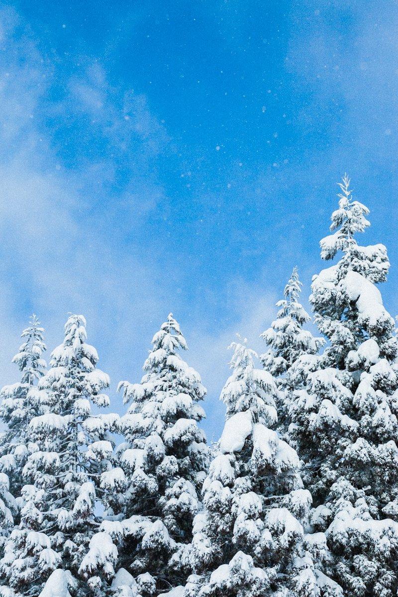 積もる雪と青空