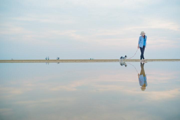 日本のウユニ塩湖でピノと散歩
