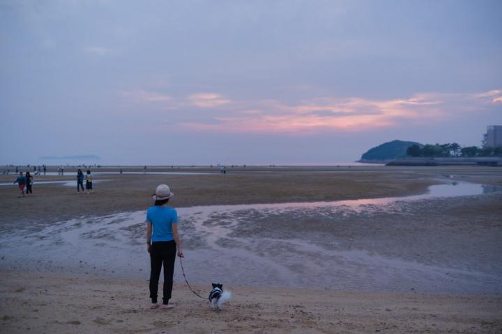 日本のウユニ塩湖の夕焼け