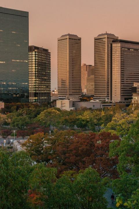 大阪城から眺めるビル群