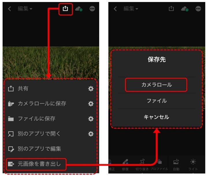 Lightroomカメラアプリ(RAWファイルエクスポート)